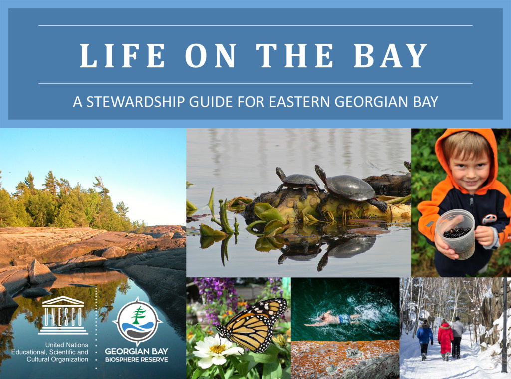 Life on the Bay Guide book cover