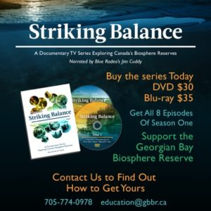 Striking Balance DVD Cover